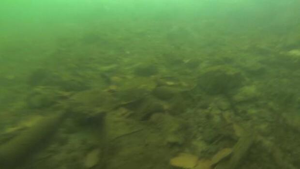 Selfie çekerken göle düşen telefonlar kamerada / Ek fotoğraflar