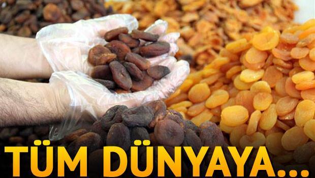 Türkiye dünyaya 79 bin ton kuru kayısı sattı