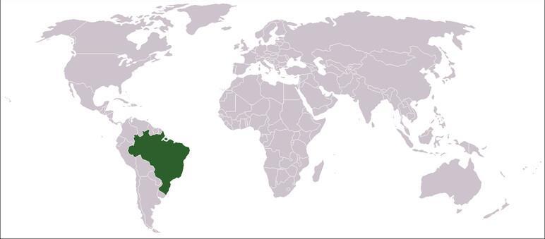 Güney Amerika'da ilk kez IŞİD'e destek bildirisi yayınlandı