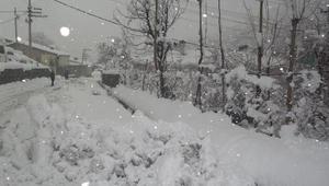 Beytüşşebapta kar yağışı yaşamı olumsuz etkiledi