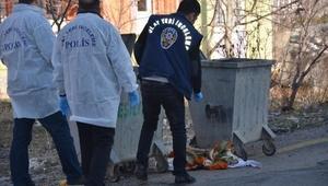 Çöplükte bebek cesedi bulundu - fotoğraflar
