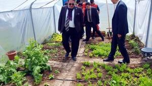 TEMA gönüllüsü öğrenciler okul bahçesinde sera kurdu