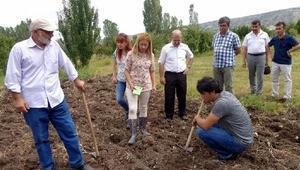 Doğal Çiçek Projesi Çankırıda uygulanmaya başlandı