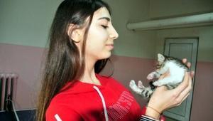 Okula giderken bulduğu yavru kediyi sahiplendi