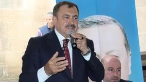 Bakan Eroğlu: Küresel bir güç olacağız (2)