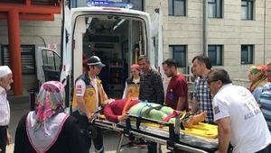 Ihlamur ağacından düşen kadın yaralandı