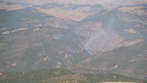 CHPli Erol: Tunceli Aliboğazındaki orman yangını söndürüldü