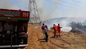 Bingölde 4 köydeki orman yangınları söndürüldü