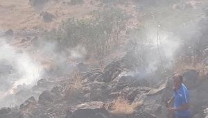 Ağrı Dağı eteklerinde örtü yangını: 200 hektarlık alan zarar gördü
