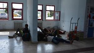 Pakistanlı 37 kaçak, İstanbul diye Sinopa bırakıldı