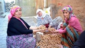 Fıstık ve ceviz ayıklama, Siirtli ev kadınlarının geçim kaynağı