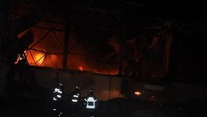 Aydında gıda fabrikası yangın