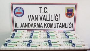 Vanda 115 kaçak göçmen yakalandı