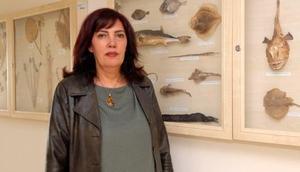 Ispartada Balık Şenliği düzenlenecek