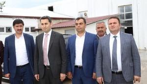 Tokatta belediye mezbahanesi yenileniyor
