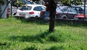 Zonguldak'ta sıcak hava bunalttı