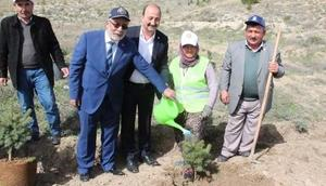 Çankırıda Afrin şehitleri için hatıra ormanı oluşturuldu