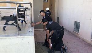 Adıyamanda 3 iş yerinden hırsızlığa 6 tutuklama