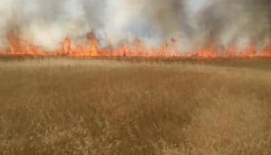 Yozgatda hububat ekili tarlada yangın