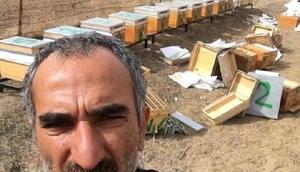 Bingölde PKK, güvenlik korucusunu şehit etti