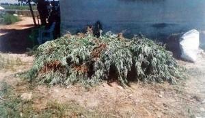 Şanlıurfada uyuşturucuya 2 tutuklama
