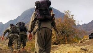 Hakkari kırsalında 4 terörist etkisiz hale getirildi