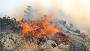 Aksarayda orman yangını 8 saatte kontrol altına alınabildi