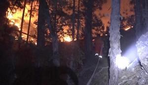 Kütahyada orman yangınını söndürme çalışmaları sürüyor