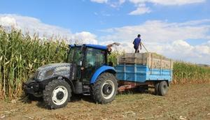 Gümüşhanede 380 dekar arazi tarıma kazandırıldı