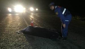 Aydında kamyonetin çarptığı bir kişi öldü