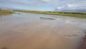 Mardinde sağanak sele neden oldu (2)