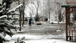 Ardahan güne karla uyandı