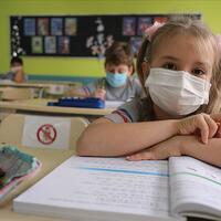 Image Many won't be able to return to school after pandemic, experts warn