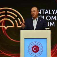 Image Antalya to see high turnout in upcoming international meetings: FM