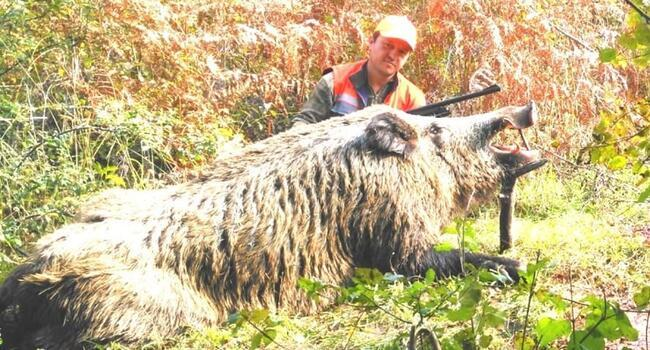 Turkish hunter's pose with massive boar divides social media users