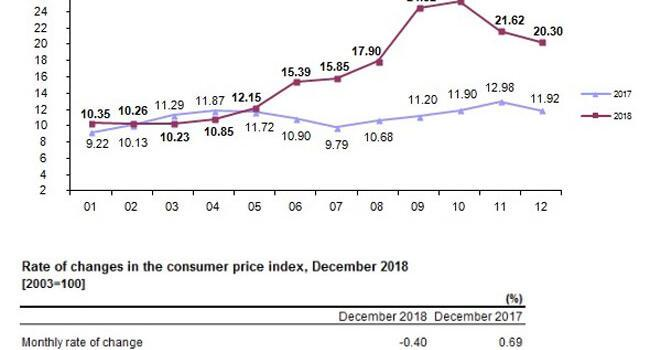 Turkey's inflation rate falls 0.4 pct monthly in December 2018