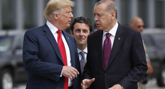 Erdoğan, Trump to meet in Washington in November