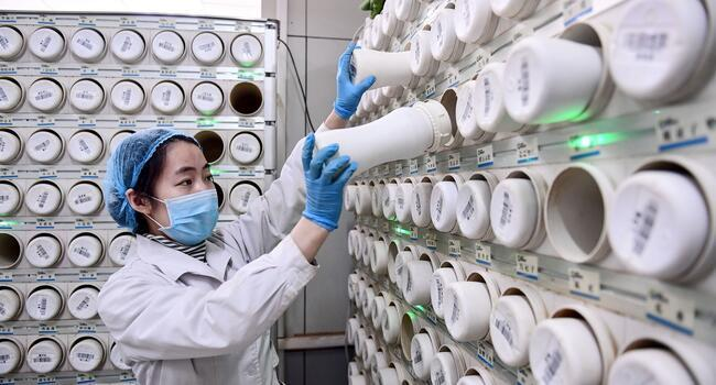 Chinas count of new virus cases drops, deaths exceed 2,200