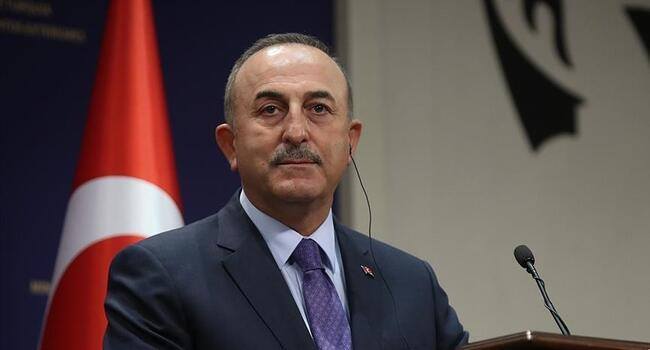 Turkish foreign minister discusses Palestine with counterparts