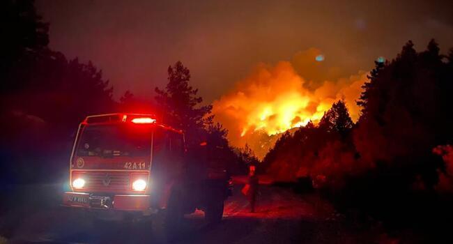 Orman yangınlarının çoğu kontrol altında: Bakan