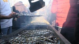 Giresun Haberleri: Fındık üreticileri kenevir izni istiyor 78