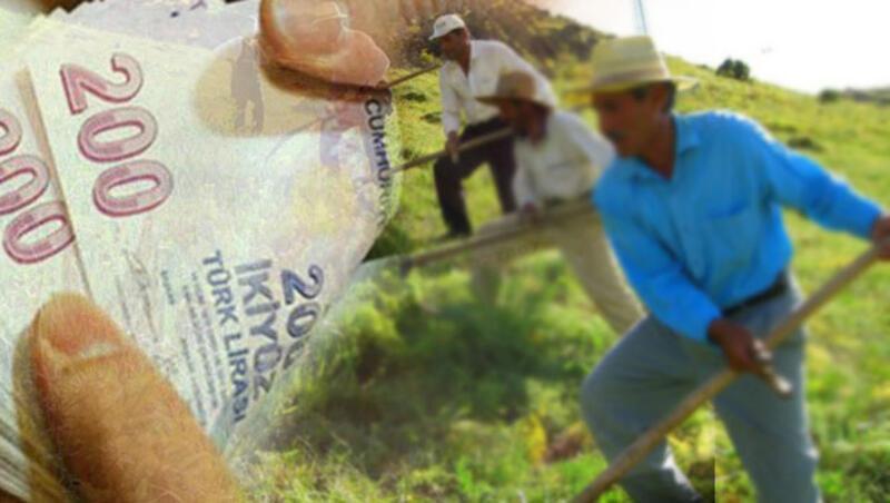 Genç çiftçi hibe şartları neler 2017 Genç çiftçi başvurusu nasıl yapılacak