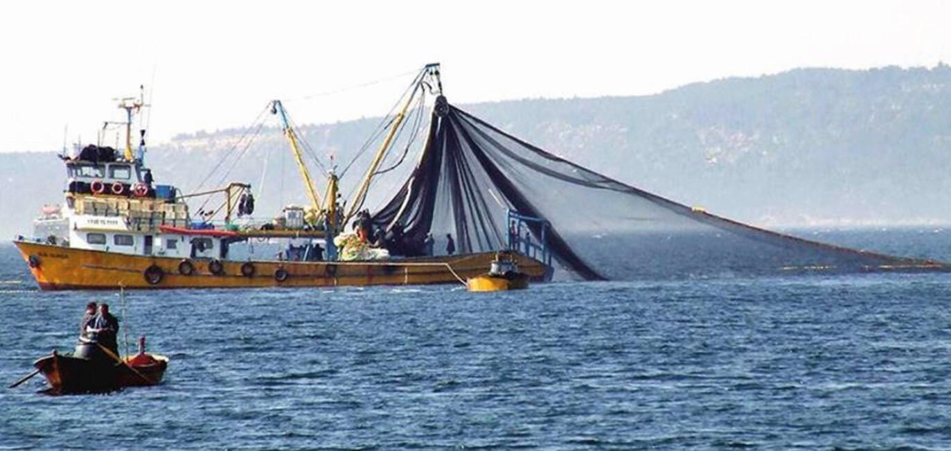 Ağlar balıkla doldu - Marmara'da durum ne