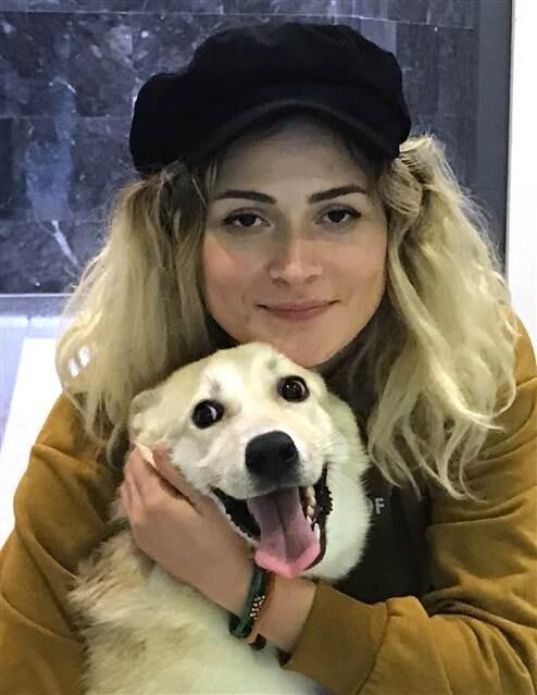 Yavru köpek 'Kuzey' taburcu edildi