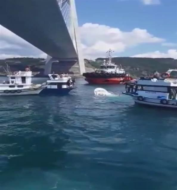 Son dakika... İstanbul'da balıkçı teknesine gemi çarptı: Bir kişi hayatını kaybetti, 2 yaralı