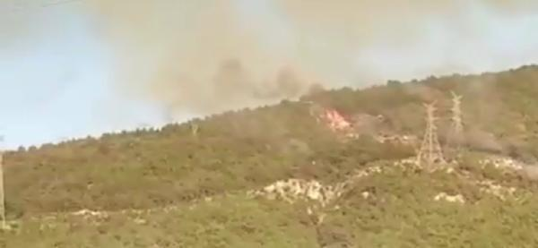 Son dakika haberleri... İskenderun'daki yangınla ilgili şoke eden iddia