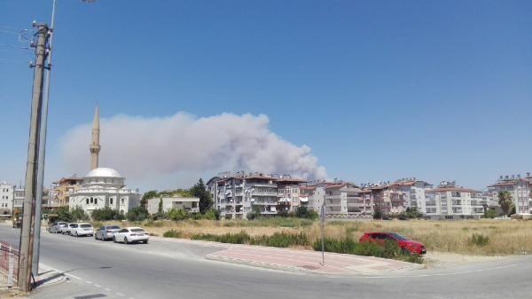 Son dakika... Antalya Manavgat'ta orman yangını