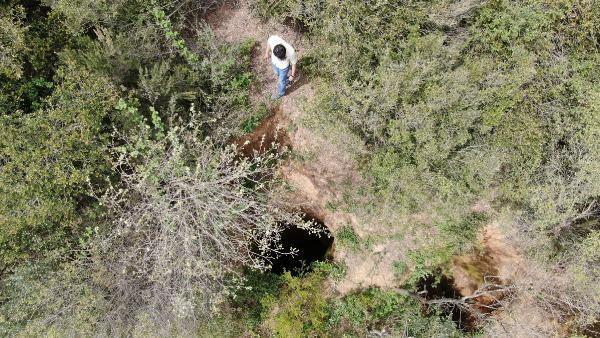 Sultangazi'deki ormanda inanılmaz görüntüler! Defineciler devasa çukurlar açtı