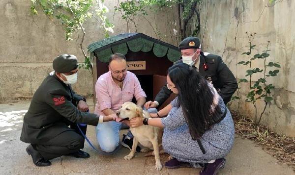Şehit onbaşı Ahmet Akdal'ın köpeği 'Atmaca' şehidin ailesine verildi... Gözyaşlarına boğuldular