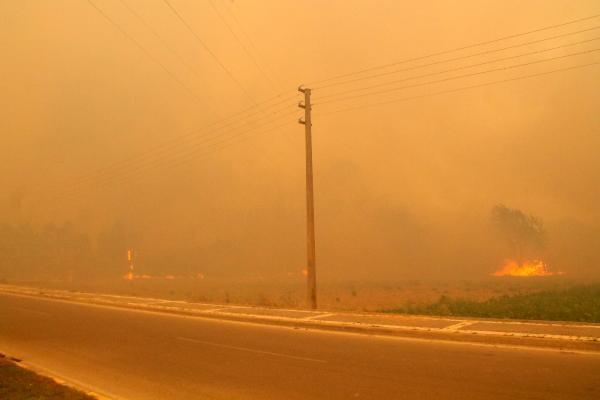 Son dakika... Manavgat Belediye Başkanı Sözen'den çok acı sözler: 8 mahalle tamamen yok oldu